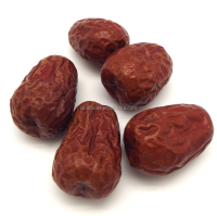 dried jujube dates fruits organic red dates