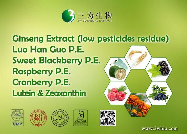 Top Quality 98% Polydatin Extract Powder,Polygonum cuspidatum Extract Powder,2%-98% Resveratrol