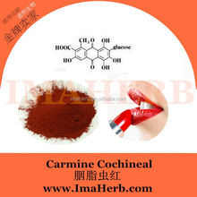 Top Grade ISO Certified dendrobium extract 10 1