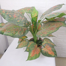 China Artificial Aglaonema Red Ornamental Tree Plant, tropical exotic plant