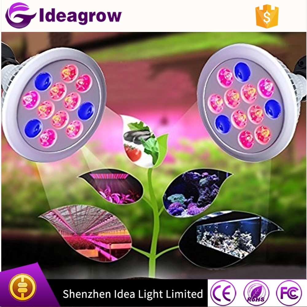 wholesale mini led lights flower hydroponic led grow lights bulb 12w E27 led par light produce robust plant growth