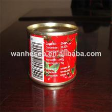 2014 new crop Price of canned tomato paste 70g*100Tin
