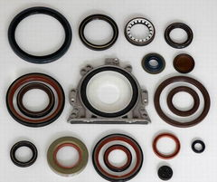 Oil seal for motorcycle