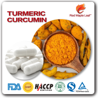 High Quality for Digestive Health Curcuma Longa Extract Hard Capsule