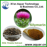 Chinese herb medicine Milk Thistle Extract 80% Silymarin