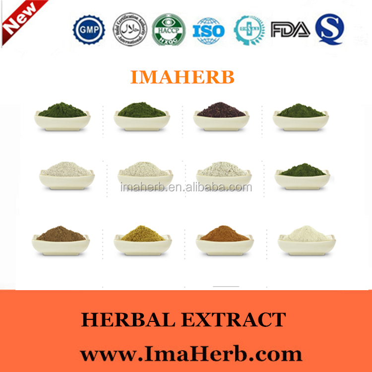Natural Organic mentha piperita extract