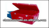 Roto moulding cheap plastic Ice storage Case, outduoor ice bin made of LLDPE by OEM
