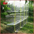 Stainless steel cage for rabbit
