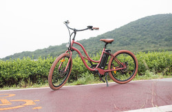hot sale customized beach cruiser from China