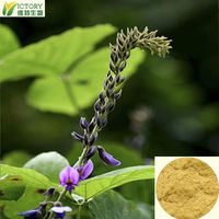 100% natural pure pueraria lobata extract / radix puerariae lobatae for hot open breast