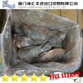Frozen Fresh Sea Food,Frozen tilapia fish price