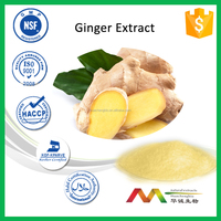 NSF-cGMP Natural Health Care Best Price Ginger Root Extract