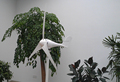 Chinese hot sale 300w wind turbine/wind power generator with CE ISO