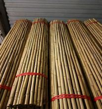 Privacy Natural Reed Bamboo Fence BambooTrellis Folding Bamboo Fence
