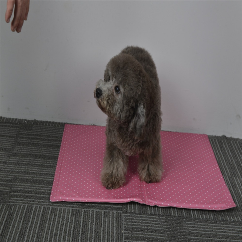 Pet Cooling Mat Cat Dog Beds Beautiful Design Pet Sleeping Cooling Mat