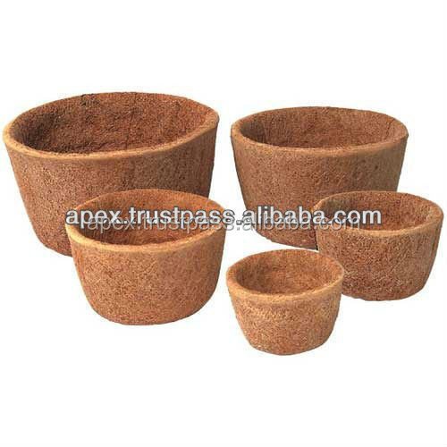growing coir pot hydroponically