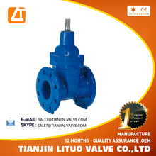 Sewage resilient wedge gate valve DN250 PN16