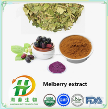 GMP Factory Supply Mulberry Leaf Extract , Mulberry 1-DNJ Dried Powder in Bulk