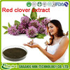 GMP Supplier Women Health Product Isoflavones Powder Red Clover Extract