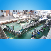 fruit vegetable processing production line