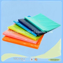 newly design plastic expanding clear file folder/pp colorful stick file folder