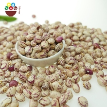 Wholesale Chinese light speckled kidney beans LSKB Xinjiang type for sale