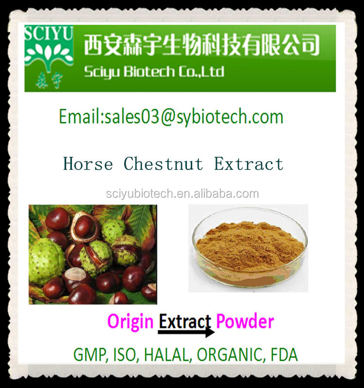 Natural Pure Organic Herbal Extract Horse Chestnut Extract Aescin 20% 40% 98%