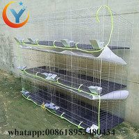 Factory Outlet Luxury Removable Rabbit Cage System for sale H type