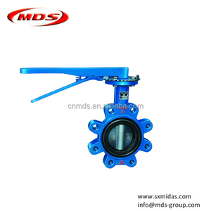 China Manufacturing Ductile cast iron Manual Concentric Lug Wafer Butterfly Valve