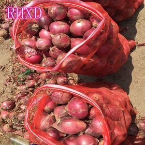 chinese mature fresh onion export price