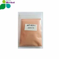 Instant black tea powder extract polyphenol 98% herbal extract