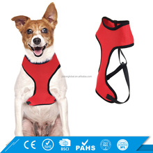 Private Label OEM Training Lead Pulling Walking Soft Mesh Dog Safety Harness