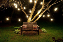 Holiday wedding waterdroof indoor outdoor string lights