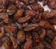 Excellent Chinese Raisin Dried Price