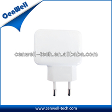 2013 popular 5V2A decorative pattern usb charger