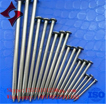 Common Nails/ Concrete Nail,Roofing Nail China Manufacturer