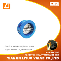 China producer best selling Cast Iron /Ductile Iron Wafer Check Valve Dual Plate