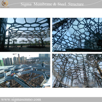 Architecture building commercial shopping pedestrian street roof shade canopy construction of steel structure