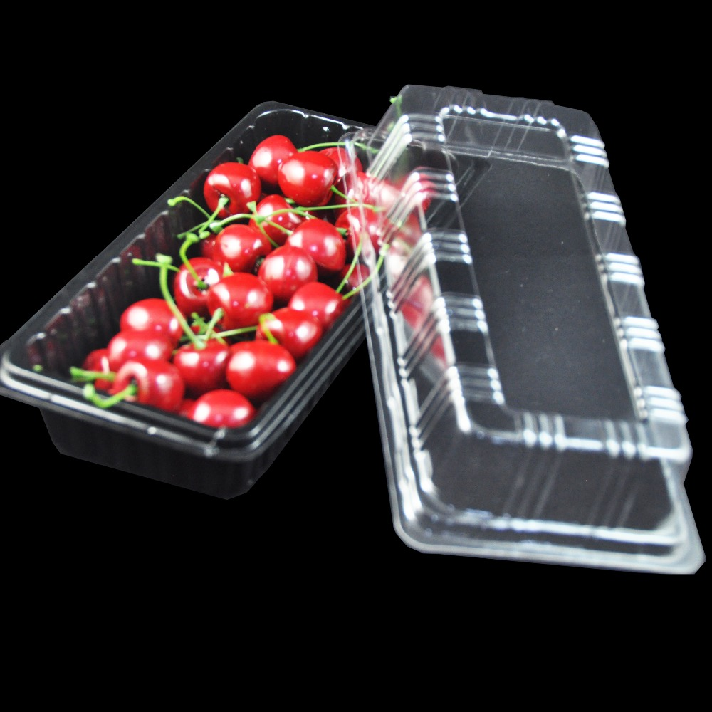 Manufacturer Disposable Plastic Fresh Fruit Packing Tray Cheap Price