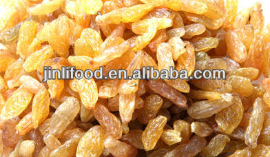 junan factory organic natural best raisins high quality