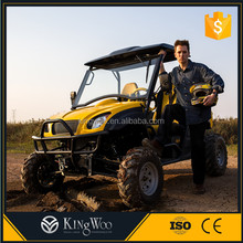5000w EEC Electric utility vehicle UTV For Sale
