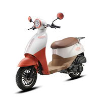 Ariic eec gas scooter 50cc best design smart hot sell model BOX-2