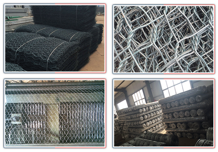 Nice Hexagonal Wire Mesh Netting