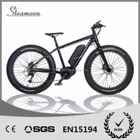 brushless mid-driven motor snow ebike/electric bicycle/electric bike with CE and lithium battery