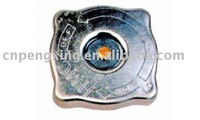 Auto Radiator Cap for FIAT
