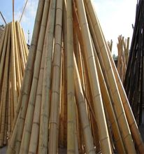WY T-001 Bamboo pole/bamboo cane