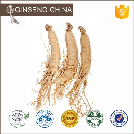 Production of Chinese herbal medicine wild ginseng from Jilin
