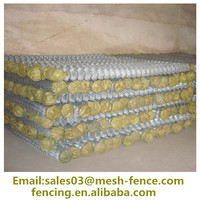 Alibaba High Quality Low Price XINLONG Galvanization/School Plastic PVC Coated chain link fence For Germany