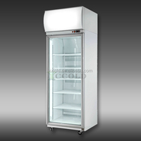 600 - 1200 LITERS SINGLE GLASS DOOR COMPRESSER REMOVABLE COMMERCIAL DISPLAY CHILLER