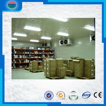 Hot new hot sale medical drug cold storage/cold room